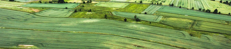 field-839797_1920