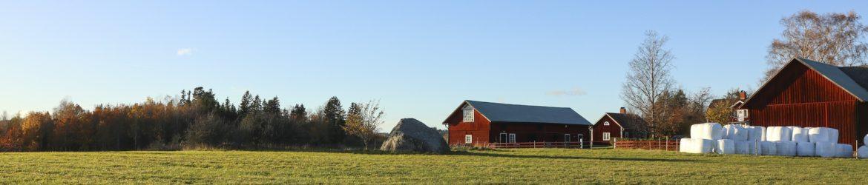 farm-3976981_1920